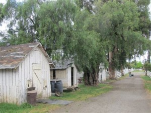 Some of the outbuildings at historic Hagemann Ranch.